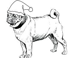 pug puppy colouring pages coloring page drawn fabulous pencil to dog pictures get the free for