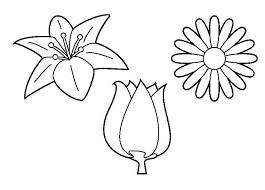 Bloemen Kleurplaten Bloemen Kleurplaten Printen Shshiinfo