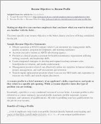 Examples Of Summaries For Resumes 14 Best Template Resume Profile Summary Resume