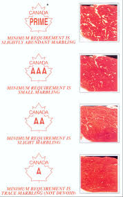 Canadian Beef Grading Chart Grading Regulations For Meat Meat Cutting And Processing