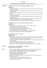 Sample Security Manager Resume Risk Security Manager Resume Samples Velvet Jobs 8