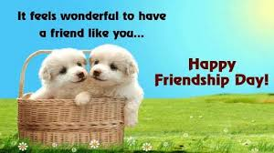 it is the privilege of friendship is to talk nonsense and have that nonsense respected happy friendship day 2018