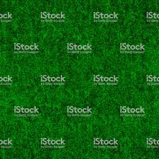 dark green carpet texture. Interesting Green Seamless Bushy Messy Dark Green Carpet Textile Texture Royaltyfree Stock  Photo On Dark Green Carpet Texture