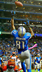 Calvin Johnson is retiring - Wish they made it least to the play-offs this  year, but hopefully nex… | Nfl football pictures, Detroit lions football, Calvin  johnson