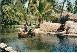 Sabu\u0027s Kerala Tour \u2013 Inspiration for Wetravel, a smarter way to ...