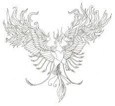 Phoenix Drawing Free Download On Ayoqq Org