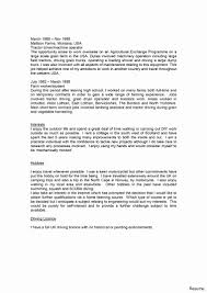 Profiles On Resumes Examples Of Profiles For Resumes Best Of Customer Profile Example