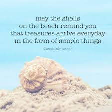 sea shell quotes quotes