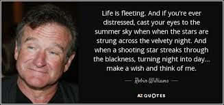 Robin Williams Quotes About Life Enchanting Robin Williams quote Life is fleeting And if you're ever
