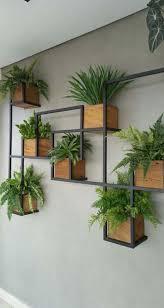 plant decor indoor house plants decor