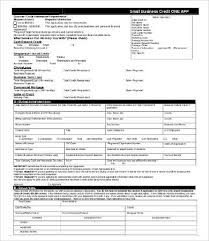 Small Business Credit Application Form Magdalene Project Org