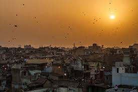 makar sankranti or uttarayan n festival of kites people gathered on terraces or rooftops of their houses everyone flying kites and the sky covered