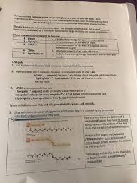solved 1 distinguish disaccharides