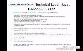 Hadoop Resume For Freshers Virtren Com