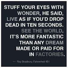Ray Bradbury Quotes Cool Ray Bradbury Quote From Fahrenheit 48 Book Cover Art And Quotes