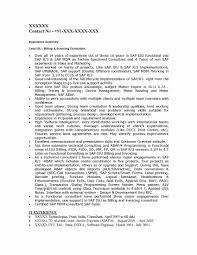 Unique Sap Srm Functional Consultant Resume Pattern Documentation