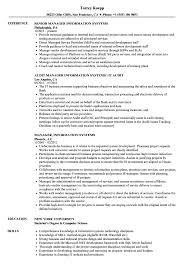 Sample Information Management Resume Manager Information Systems Resume Samples Velvet Jobs 11