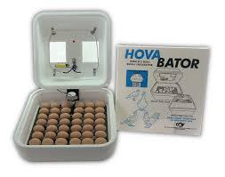 Cabinet Incubator Kit Auto Egg Turner Poultry Ebay