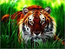 tiger wallpaper desktop.  Desktop 3D Tiger HD Wallpaper  Download In Desktop Cave