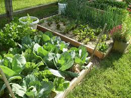 Herb Garden Layout Ideas Design Plans Home Vegetable Unique Raised ...