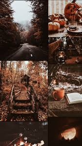 missing autumn so I made a moodboard ...