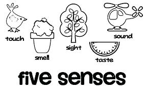 5 Senses Coloring Sheets Preschool Pages Free Printable 38929