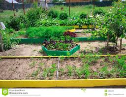 Small Picture 51 Plot Garden Design California Garden plot idea 2 Gardening
