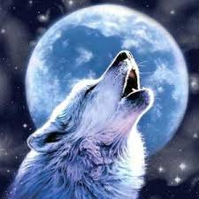 wolf howling painting. Brilliant Wolf Lone Wolf Howling At Moon  Full Drill Diamond Painting With
