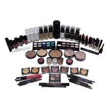 pierre rene professional make up artist starter kit