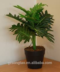 Office pot plants Extra Large Ukgardens Artificial Philodendron Xanadu Green Fern Office Or House Indoor Plant In Pot Pinterest Ukgardens Artificial Philodendron Xanadu Green Fern Office Or House