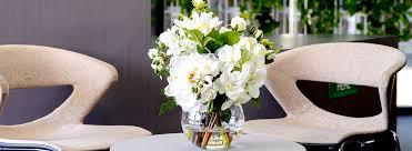 Best indoor plants for office Large Small Indoor Plants Neginegolestan Best Small Low Light Indoor Plants For Offices Ambius Us