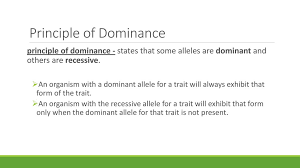 principle of dominance bio 1a unit 4 notes genetics ppt download