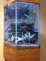 Funny Fish Tank Decorations Another Adorable Theme For Your Diy Fish Tank Decor Always Seal
