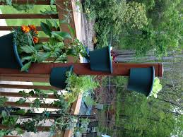garden post. My Garden Post With The Peppers Already Outside T