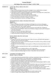 Digital Strategist Resume Social Media Strategy Resume Samples Velvet Jobs