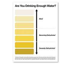 Amazon Com Passion Fury Urine Pee Color Chart Framed
