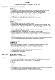 Developer Junior Resume Samples Velvet Jobs