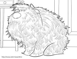 Small Picture The Secret Life Of Pets Coloring Page Coloring Pages Pinterest