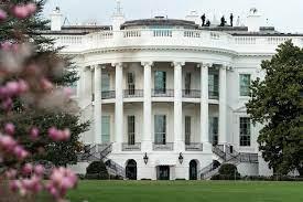 Biden Campaign: Feds Could Escort ...