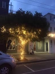 outdoor tree lighting ideas. Outdoor Tree Lighting Ideas Best Of Dazzling Decorative  Pany 25 Lovely Outdoor Tree Lighting Ideas