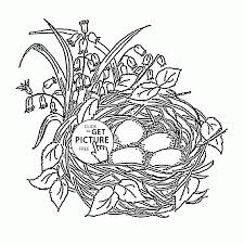 Birds Nest And Spring Flowers Coloring Page For Kids Seasons