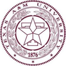 Texas A amp M University     s Bush School of Government  amp  Public Service provides a rigorous online Executive Master     s in Public Service and Administration with