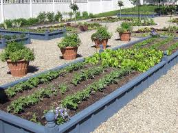 Small Picture Cinder Block Raised Bed Garden Design The Garden Inspirations
