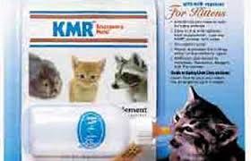 pe kitten milk replacer kmr emergency feeding kit