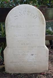 George Curtis (1806-1878) - Find A Grave Memorial