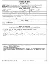 Mckinsey Resume Sample Name Examples Senior It Consultant