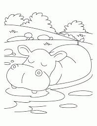Small Picture Pictures Of Hippos Coloring Home