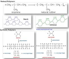 Monomer And Polymer Chart Macromolecule Monomer Polymer Chart Proteins
