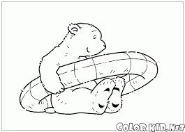 Disegni Da Colorare Orso Polare