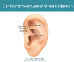 Ear Piercing Chart For Anxiety 3 Most Effective Ear Acupressure Points For Reducing Stress